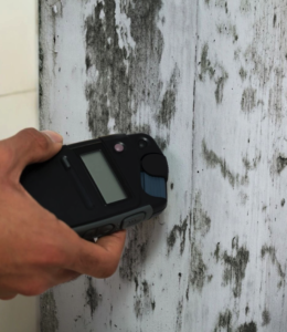 Mold test on a wall